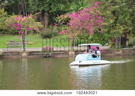 BANGKOK Thailand - January 7 2017: Lovely asian family wearing purple life jackets and riding pedal blue boat in Dusit zoo's pond with beautiful green trees and pink bougainvillea flowers