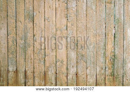 Barn Wooden Wall Planking Texture. Solid Wood Slats Rustic Shabby Brown Background. Grunge Wood Board Panel.