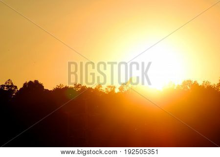 bright sun during the sunset, orange skies and silhouette trees