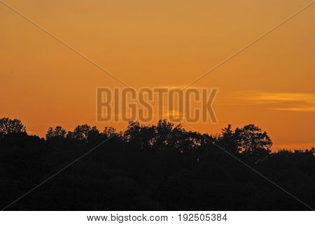 Summer sunset with orange skies over the trees