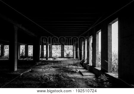 Abandoned building interior in the jungle forest. Dark grunge image. Abandoned place. Building concrete skeleton. Black and white.