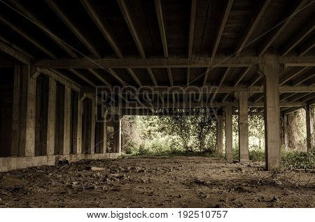 Abandoned building interior in the jungle forest. Dark grunge image. Abandoned place. Building concrete skeleton.