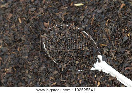 Dry black tea on a  spoon on a black tea leaves background.