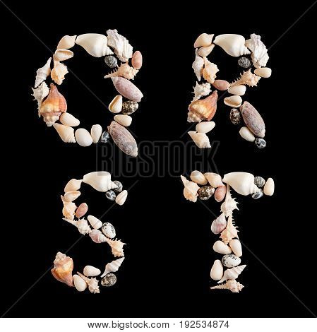 various sea shells capital Q R S T on isolated black background with clipping path.