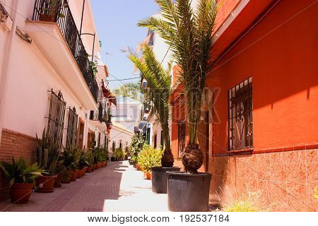 Street. Spanish architecture. Marbella city, Costa del Sol, Andalusia, Spain.