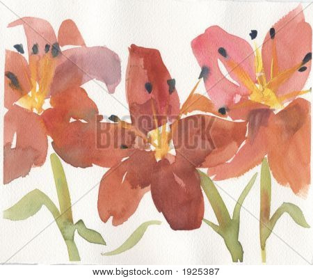 Trio Of Lilies