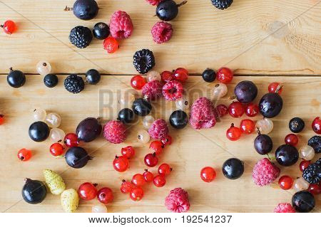 Red white black currant red and black raspberries white strawberries on wooden table as ingredient to healthy eating and drinking