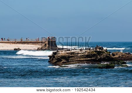 LA JOLLA, CALIFORNIA - JUNE 16, 2017:  Cormorants sit on a natural rock formation near visitors enjoying the ocean view on the sea wall at the historic Children's Pool.