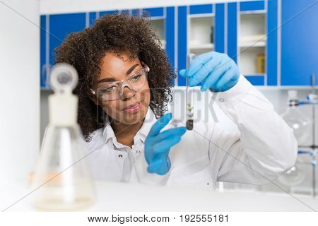 Female Laboratory Scientist Examining Plant Sample In Test Tube, Work In Genetics Lab African American Woman