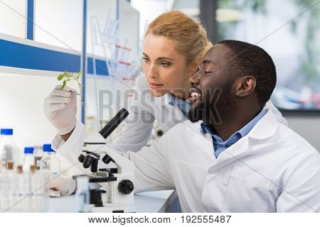 Scientists Looking At Sample Of Plant Working In Genetics Laboratory, Mix Race Couple Of Researchers Analyzing Result Of Experiment In Lab