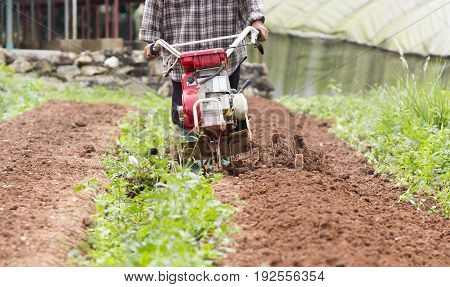 Small rotary cultivator working in small garden.