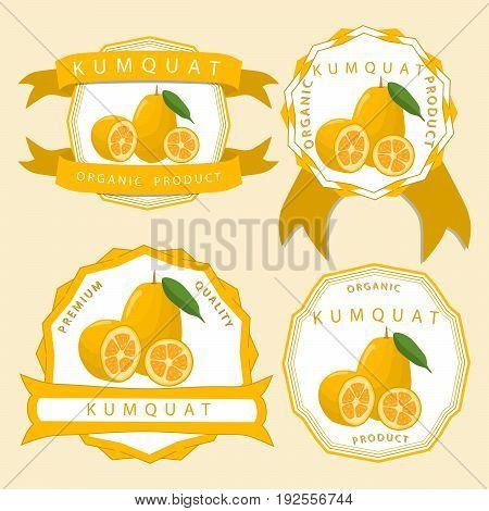 Vector illustration logo for whole ripe fruit kumquat, pear green stem leaf, cut half sliced cumquat background.