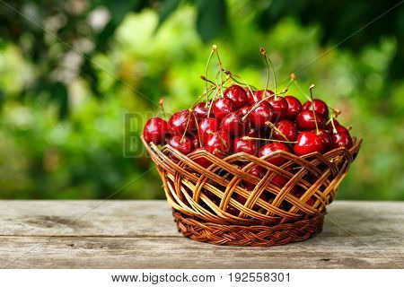 cherry basket. Ripe cherries in wicker basket on wooden table with blurred green garden on the background. Gardening and harvest concept. Healthy summer food