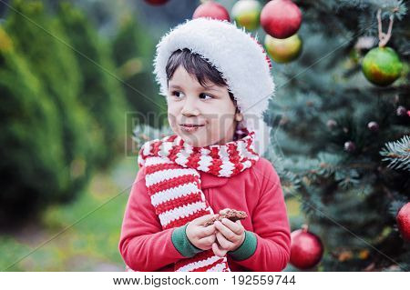 Little boy holding christmas gingerbread closeup. Child waiting for a Christmas in the wood. Christmas in juli.