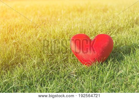 Red soft heart small pillow shape for Valentines day on green grass background with soft yellow warm sunlight and copy space selective focus