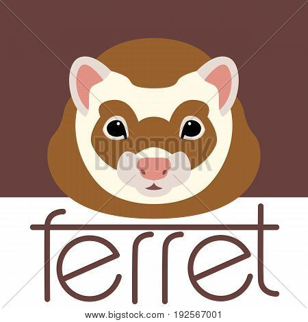 ferret  face  front side vector illustration style Flat