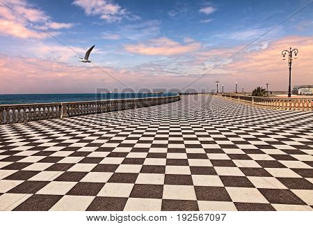 Livorno (Leghorn),Tuscany, Italy: promenade Mascagni Terrace at dawn, a picturesque seashore on the Ligurian sea with black and white checkered floor and columned bannister