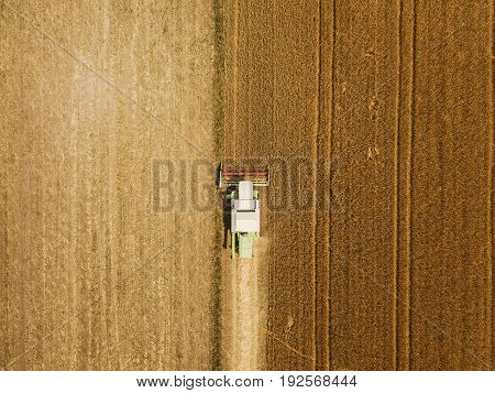 Aerial view of combine harvester agricultural machinery harvesting wheat crops in cultivated field top view
