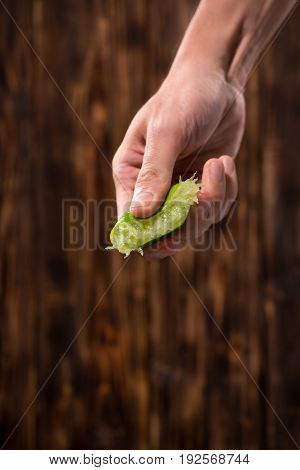 Hand squeeze lime with lime drop on dark wooden background