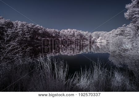 Beautiful False Color Surreal Infrared Landscape Image Of Lake And Surrounding Forest