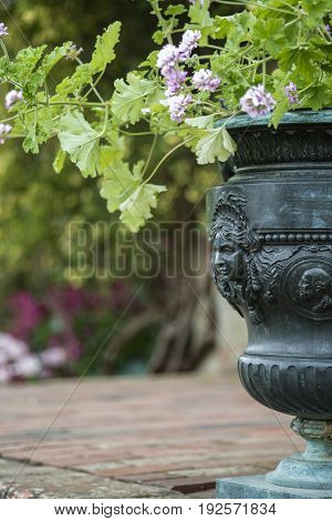 Shallow Depth Of Field Image Of English Country Garden With Urn Style Planter With Flowers