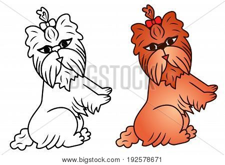 Dog caricature vector Yorkshire Terrier funny colored illustration sketch animal brown