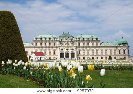 VIENNA, AUSTRIA - APR 29th, 2017: Belvedere is a historic building complex in Vienna, consisting of two Baroque palaces the Upper and Lower Belvedere , the Orangery, and the Palace Stables. Colorful tulips in the foreground.