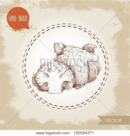 Hand drawn sketch style cauliflower composition. Vector farm fresh food illustration isolated on grunge old background.