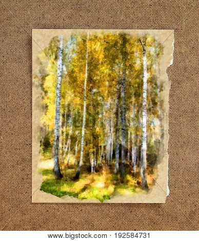 Tall slender white birch trunks in a golden dress. Russian autumn watercolor landscape on paper with a torn edge in the passepartout poster