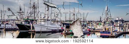 A southern California fishing fleet sitting in a marina.