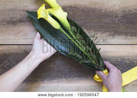 Hands holding three yellow calla lilies on wooden background
