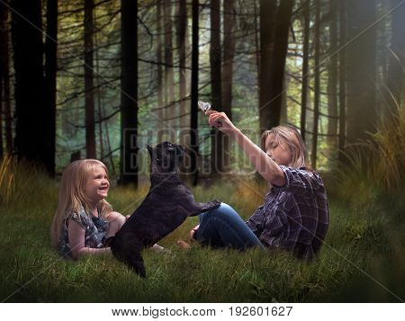 Happy children playing with a dog in a beautiful pine forest. The older girl shows butterfly. Dog and little sister emotionally happy