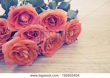 Vintage picture of orange roses on wooden background with copy space for some text Concept of love Valentines Day background wedding day