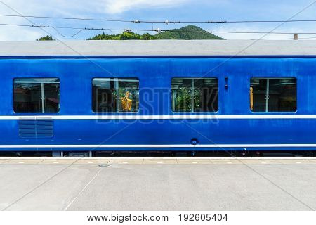 The Blue train stop at the station