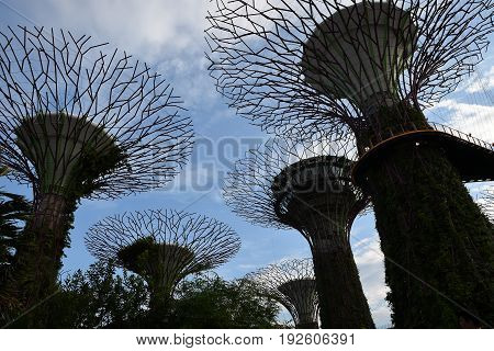 Singapore MAY 28 2017: Supertrees at Gardens by the Bay. The park of a strategy by the Singapore government to transform Singapore from a