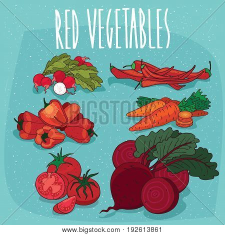 Set Of Isolated Clipart Red Organic Food Products