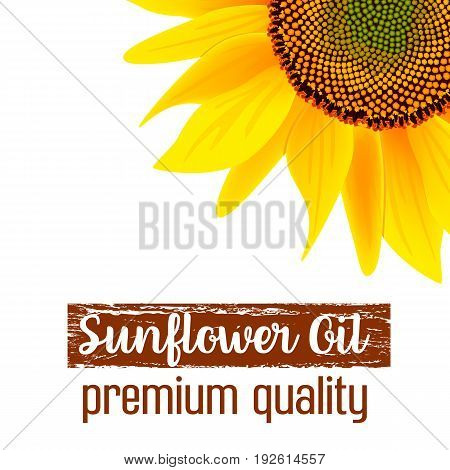 Natural sunflower oil label or advertising poster vector illustration. Banner with sunflower for oil product eco oil from sunflower