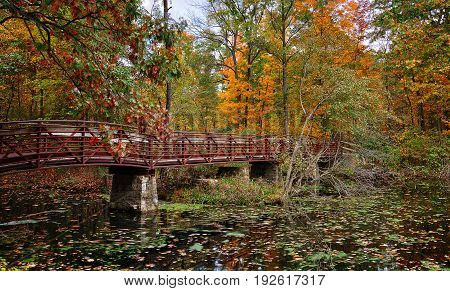 A beautiful autumn scene at a lake that shows a bridge crossing the water.