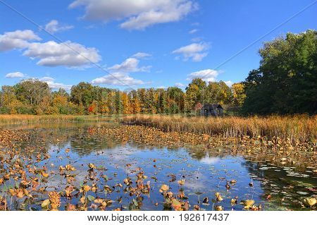 Beautiful autumn scene at a tranquil fishing pond in Ohio. The pond features a rustic shelter house. Located in the W.W. Knight Nature Preserve.