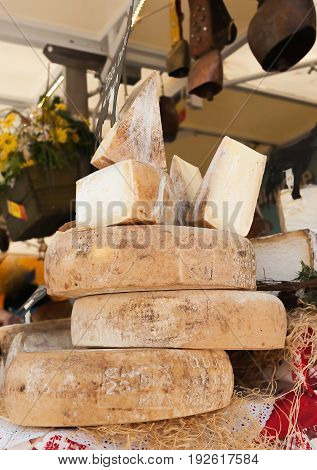 Cheeses And Cut Pieces In Bulk On The Counter Of A Market.