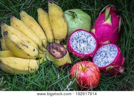 Mix fruits on green grass banana dragon fruit apple and guava