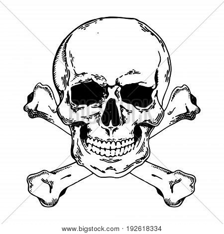Skull with bones. Pirate symbol Jolly Roger engraving vector illustration. Scratch board style imitation. Hand drawn image.