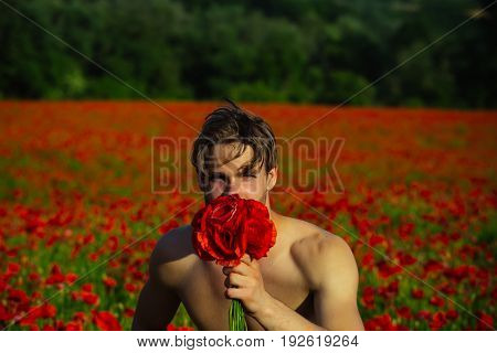 Young Man Hold Bouquet Of Red Poppy Flower
