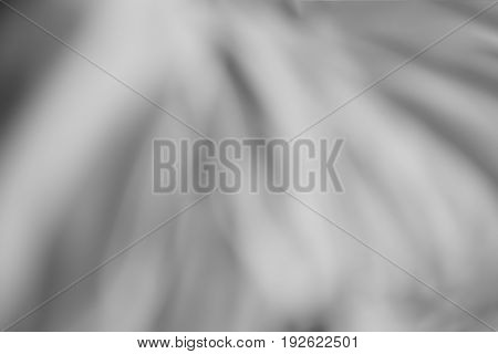 Horizontal black and white bokeh canvas background hd