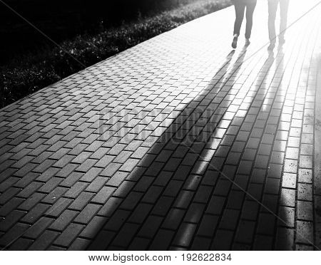 Black and white walking couple in sunset park bokeh backdrop hd