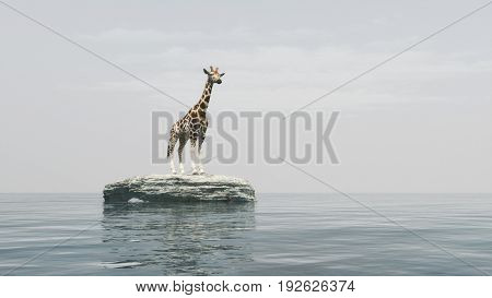 A giraffe on a stone off the seashore admiring the ocean. This is a 3d render illustration