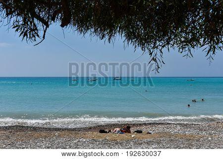 Sea View Under A Mediterranean Tree