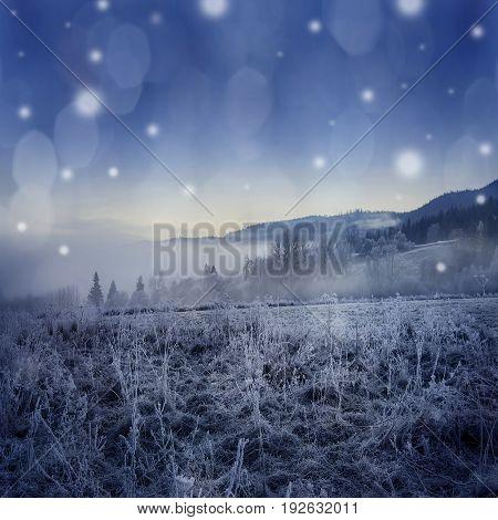 fogy winter morning - a beautiful winter frozen landscape - Sumava Czech republic