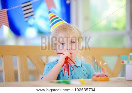 Preschooler Or Toddler Birthday Party