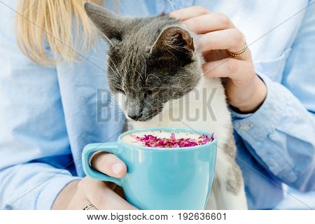 Blonde Girl In Jeans Shirt Holding A Blue Cappuccino Cup And Play With Cat